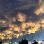 ルミさん、夕方の雲を撮る